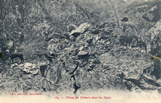 Coche 159