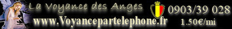 81373933banniere-belgique-jpg