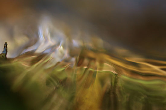 """Hubert Reeves : """"il faut engager une mutation énergétique mondiale"""""""