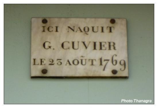 Plaque de la maison Cuvier