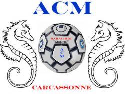 1 acm carcassonne. Black Bedroom Furniture Sets. Home Design Ideas