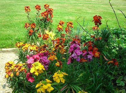 Entretien d 39 espaces verts entreprise d 39 espaces vert for Entretien des jardins et espaces verts