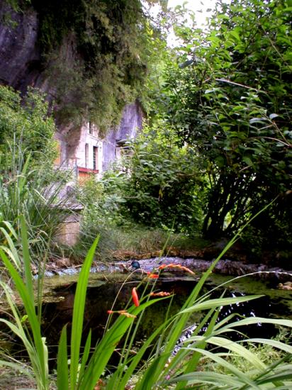 Quand brant me se joue venise for Au saint roch hotel jardin