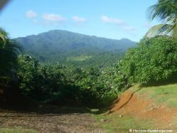 Relief de la Basse-Terre