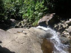 Rivière vers première chute du Carbet