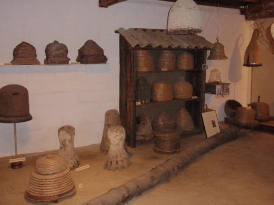 Vue partielle de l'exposition de Comps, 2007
