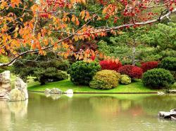Bassin de style japonais