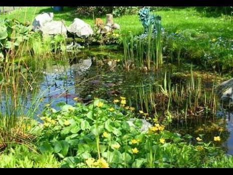 Bassin de style champêtre