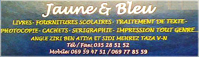 Sérigraphie Jaune & Bleu