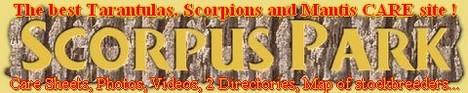 Scorpus Park