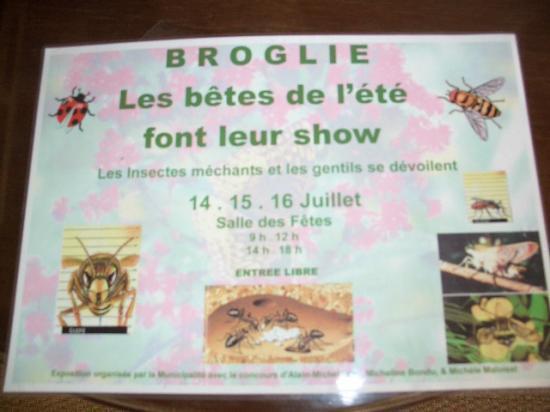 Affiche réalisée par la Mairie de Broglie lors d'une de mes conférences