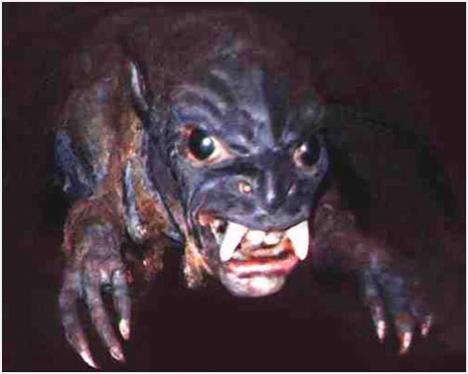 Chupacabra Puerto Rico cryptozoology paranormal cryptozoologie mutilations animales