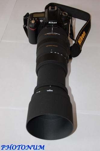 NIKON D90 + SIGMA 120-400