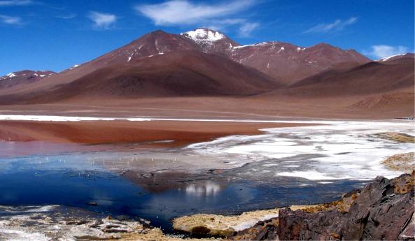 Laguna Colorada (4 500 m)