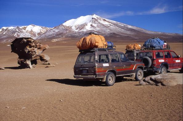 Arrêt à l`arbre de pierre de retour vers San Pedro d`Atacama