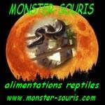 www.monster-souris.com
