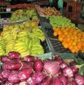 Prugnière Fruits et Légumes