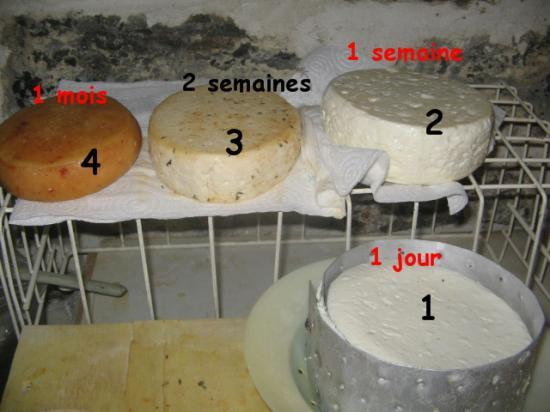 fromages-step-by-step