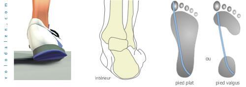 interieur du pied