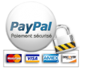 pay pal secure payment