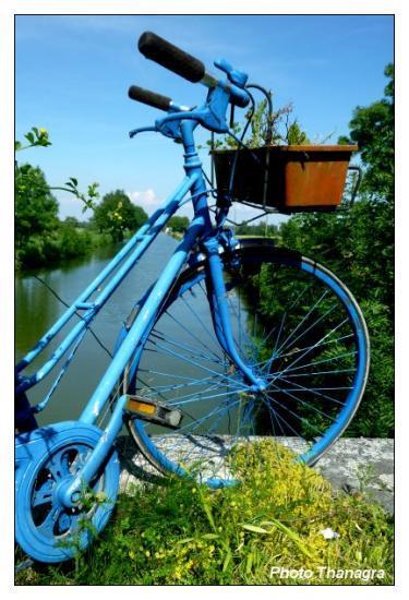 Le vélo bleu.jpeg