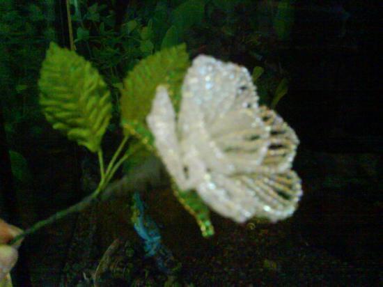 Arbres et fleurs en perles